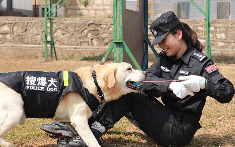 警犬的绝对忠诚使人敬佩